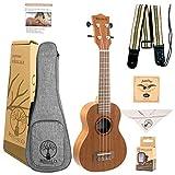 Soprano Ukulele Regalo Guitars Play Your Gift 21-Inch Ukelele Starter Kit Professional small Wooden Guitar Ukalalee Bundle Free Video Lessons, Bag, Tuner, Strap, Polishing Cloth, Aquila Strings Set