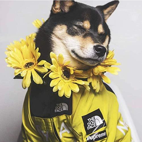 The Dog Face - Abrigo de poliéster para perro, diseño moderno, color amarillo, talla 5XL