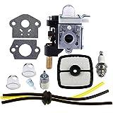 Hipa RB-K84 Carburetor with Gasket Fuel Repower Kit Air Filter for Echo PE265 PPT265 PAS265 SHC265 HCA265 SRM265 SRM265S SRM265T SRM265U Trimer Weedeater
