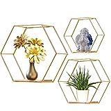 Honeyhouse Juego de 3 estantes hexagonales de metal para pared, estantes de...