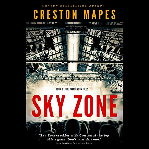 Sky Zone  By  cover art