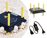 Küken-Wärmeplatten-Set: Wärmeplatte Comfort 25x25cm (15W, 230V) +Temperaturregler für die professionelle Kükenaufzucht, Heizmatte, Kükenwärmer, Heizkabel, Inkubator, Kunstglucke, Wärmebirne