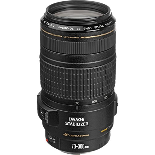 Canon EF 70-300mm f/4-5.6 IS USM Lens for Canon...