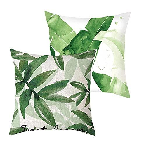 Paquete de 2 fundas de cojín de hoja verde de terciopelo cuadrado de doble cara con cremallera invisible para el sofá del hogar, sala de estar, sofá, cama de coche, funda de cojín decorativa G076