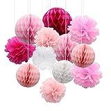 CattleyaHQ 12 Pezzi di Palla di Fiori di Pompon di Carta, Palle di favo di Tessuto, Bella Decorazione per Matrimoni, Feste, Baby roomste, Baby Room (Pink)