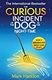 The Curious Incident of the Dog In the Night-time - David Fickling Books (PB) - 02/08/2012