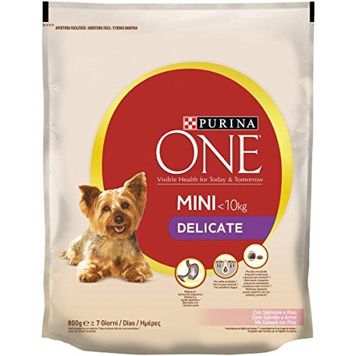Purina One Mini Crocchette per il Cane, Delicate con Salmone e Riso, per Cani fino a 10 kg, 800 g