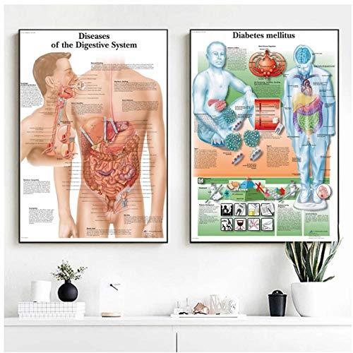 DLFALG Cuadro de patología Enfermedades de anatomía carteles e impresiones lienzo arte pintura cuadros de pared para decoración de sala de estar decoración del hogar-40x60cmx2 sin marco