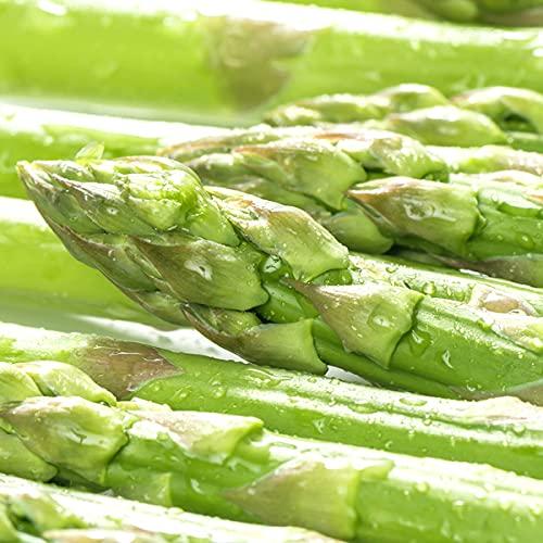 山形県 最上町産 グリーンアスパラ 2kg(2Lサイズ) 露地栽培 アスパラ アスパラガス 野菜 お取り寄せ