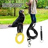 Com apito de adestramento para cães com cordão grátis, clique para adestramento de cães e latidos, ferramenta para uso ao ar livre