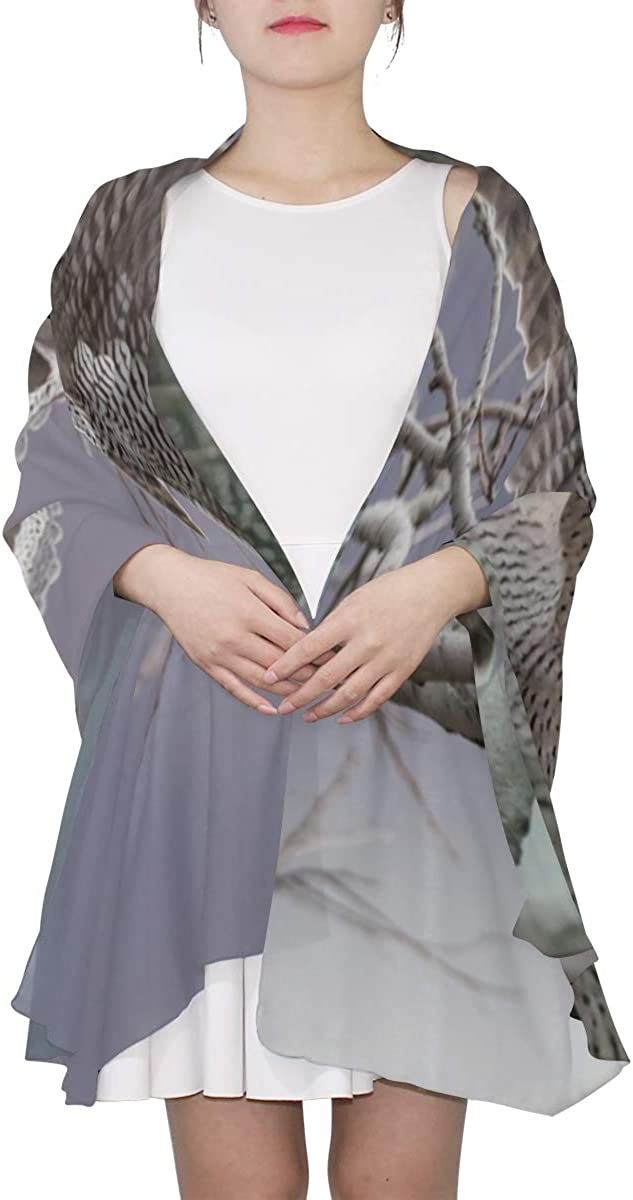 An Eagle With Open Claws Unique Fashion Scarf For Women Lightweight Fashion Fall Winter Print Scarves Shawl Wraps Gifts For Early Spring