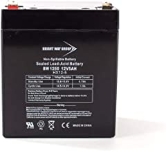 Bright Way Group BW1250 12V 5AH Sealed Lead Acid Battery, Fast Rechargeable Sealed Lead Acid Battery With F1 Terminals For Home Security, Alarm System And More, Spill And Leak Proof