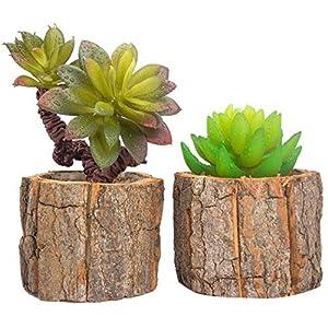 Huryfox 2 Piezas Plantas Suculentas Artificiales Jardinera Suculenta Falso Plantas de Cactus Faux Pequeñas con Macetas…