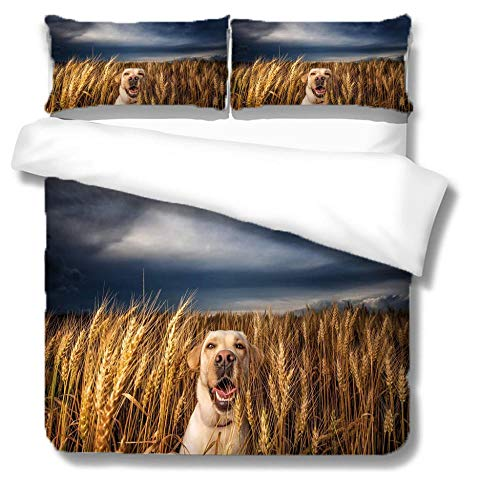 ZZZXX Super King Duvet Animal Golden Retriever Dog In Wheat Field Bedding Set Easy Care Machine Wash Print Quilt Cotton And Polyester Fabric Cover Set Cotton With 2 Pillowcase,220X230