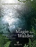 Die Magie des Waldes: Weisheitsmärchen – Rituale – Meditationen