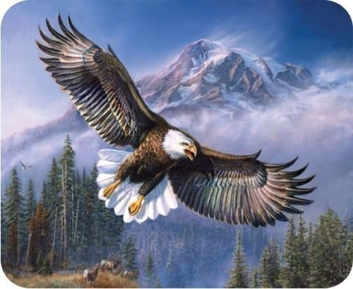 (mouse pad) New Bald Eagle Computer PC Mousepad Mouse Pad Mat Sold by Yanteng