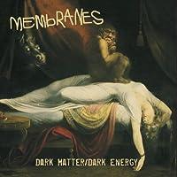 Dark Matter/Dark Energy [12 inch Analog]
