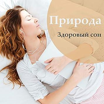 Природа: Здоровый сон, Успокоить нервную систему, Сбросить стресс, Звуки воды и пение птиц, Отдых, Спать всю ночь, Сноведения