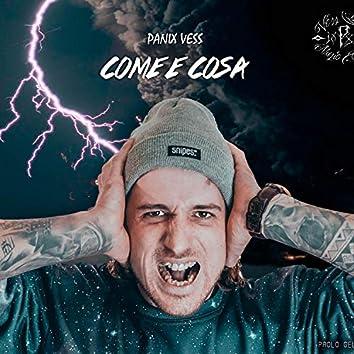 PANIX VESS - COME E COSA