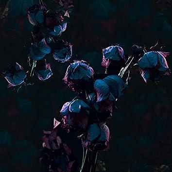 Seasons (feat. Aimee London)