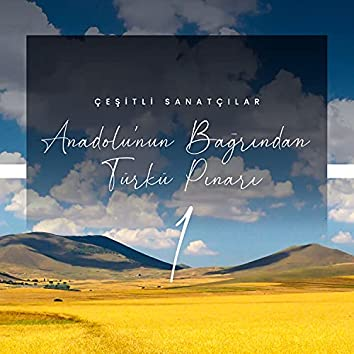 Anadolu'nun Bağrından Türkü Pınarı / 1