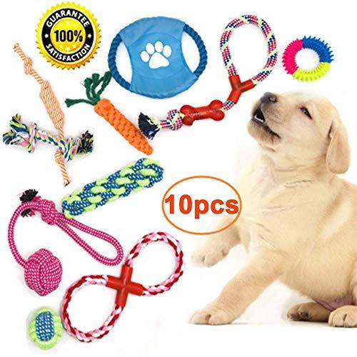 MOCFLY Hundespielzeug Set,10 Stück Welpen Hunde Kauspielzeug,Baumwollknoten Spielset Seil Form,Interaktives Spielzeug für Kleine und Mittlere Hunde,zum Zahnreinigung Geeignet