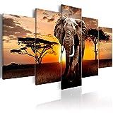 decomonkey Bilder Afrika Tiere 200x100 cm 5 Teilig