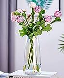 FUFRE Florero de Vidrio Diseño Creativo Jarrón de Vidrio Transparente, Jarrones de Cristal para Flores para Bodas, Decoración del Hogar U Oficina (Siete Colores)