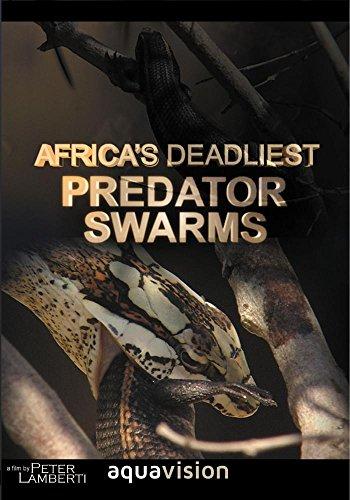 Africa's Deadliest - Predator Swarm