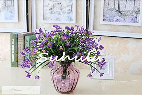 100 Teile/beutel Narzisse Blume, Bonsai Samen Von Wasserpflanzen Doppel Blütenblätter Rosa Narzisse Samen Blumensamen Für Hausgarten