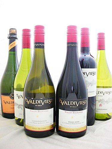 バルディヴィエソ6本ワインセット【チリ産・・赤ワイン×3・白ワイン×2・スパークリング×1・辛口・750ml】