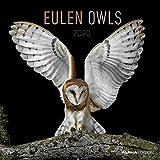 Eulen - Kalender 2020 - Alpha Edition-Verlag - Broschurkalender mit Platz zum Eintragen - 30 cm x 30 cm (offen 30 cm x 60 cm)