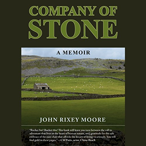 Company of Stone audiobook cover art