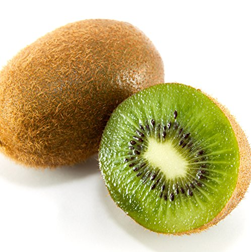 Matua Male Kiwi Actinidia Deliciosa Live Plant