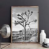 CUTMG Schwarzweiss Joshua Tree Wandkunst Poster Wüste