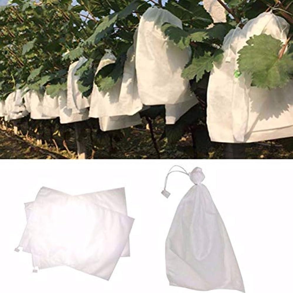 組み合わせ長くするシミュレートする100 PCSフルーツグレープ保護袋野菜性不織布生態フィルムメッシュに対する昆虫ポーチペストコントロールアンチ鳥バッグ,B