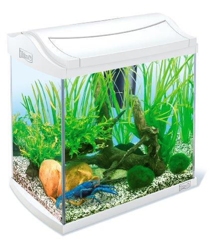 aquarium tetra 30l