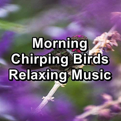 Nature Sounds for Sleep and Relaxation, Nature and Rain & Nature Sounds Nature Music