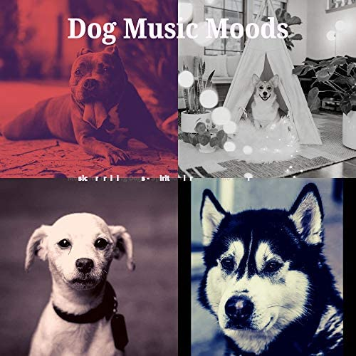 Dog Music Moods