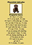 magnetsandhangers Poster, Motiv: Schokoladen-Labrador, A4,
