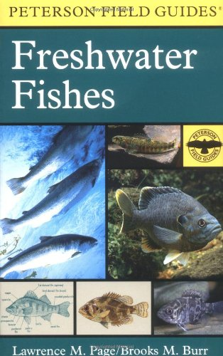 A Field Guide to Freshwater Fishes: North America, North...