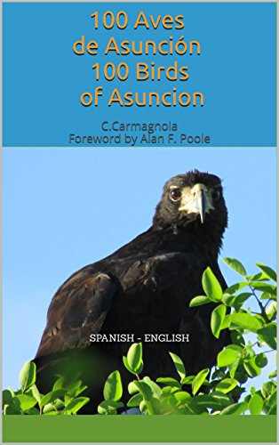 100 Birds of Asuncion (English Edition)