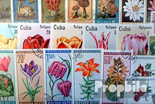 Prophila Collection Motivazioni 100 Diversi Fiori e Piante Francobolli (Francobolli per i Collezionisti) impianto