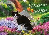Katzen im Garten (Wandkalender 2021 DIN A4 quer)