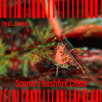 Scomo's Bushfire Crisis (feat. Skript)