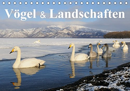 Vögel & Landschaften (Tischkalender 2017 DIN A5 quer): Vogelbildkalender der Spezial-Bildagentur für Vogelfotografien - birdimagency.com (Monatskalender, 14 Seiten )