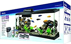 Aqueon LED 55 Gallon Aquarium