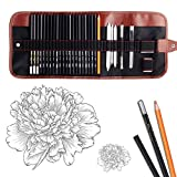 Best Charcoal Pencils - Dowswin 29 Pieces Pen Charcoal Drawing Set Sketching Review