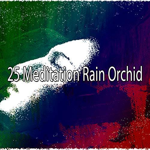 25 Meditation Rain Orchid