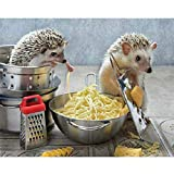 Classic Jigsaw Puzzle 1000 Piece Wooden Adults Children Puzzles Cooking Hedgehog Art DIY Leisure Game Fun Toy Gift Suitable Family Friends